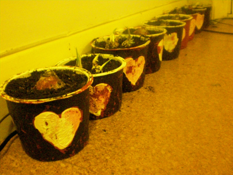Painted papier mache pots with bulbs